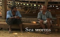Sea_worms