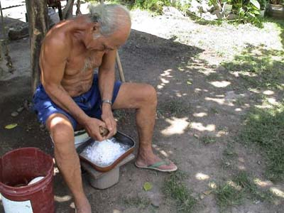 A man grating coconut by hand