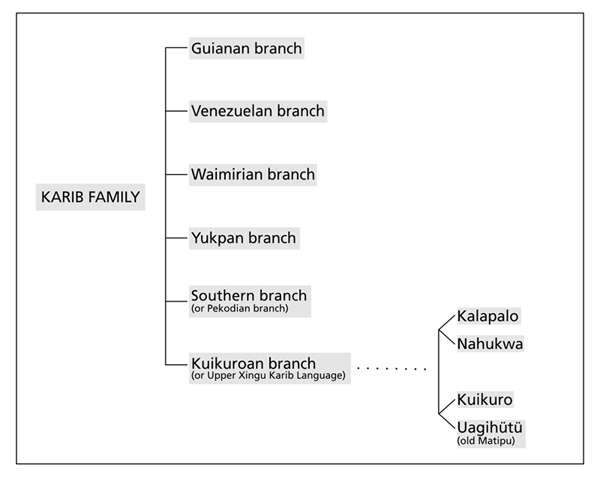 Figure 1-classification_LKAX_DOBES2012