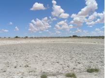 taa_waterhole_dry